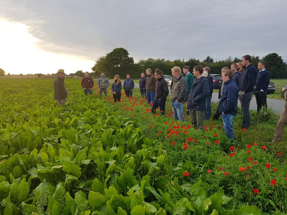VKST. Markvandring Med Unge Landmænd