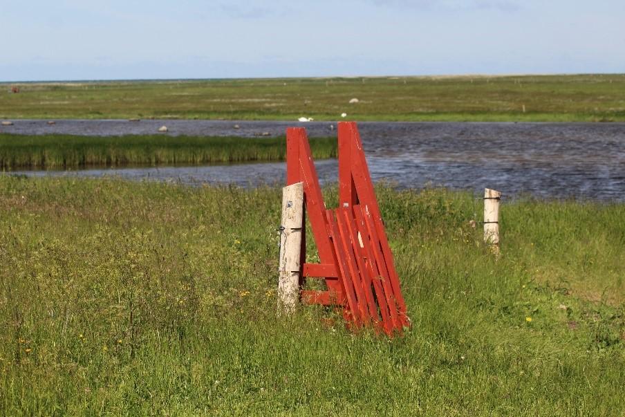 Igen I år Er Der 100 Procent Tilskud Til Hegn I De Særligt Udpegede Natura 2000 Områder