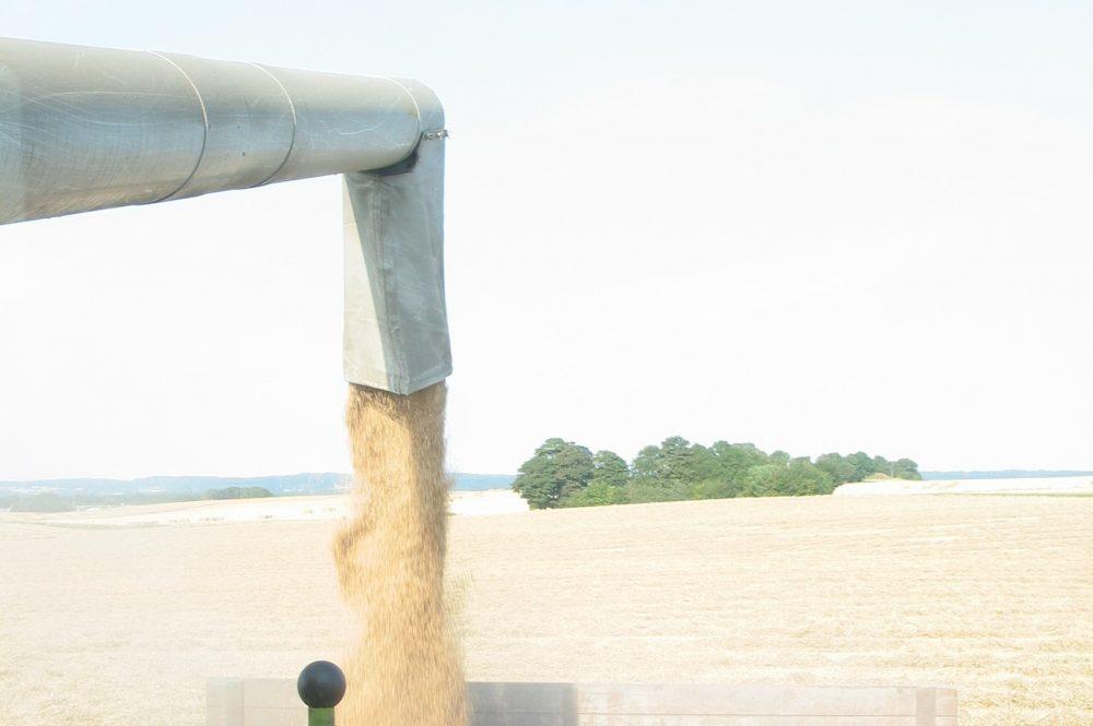Kan Dit Korntørringsanlæg Klare Endnu En Våd Høst?