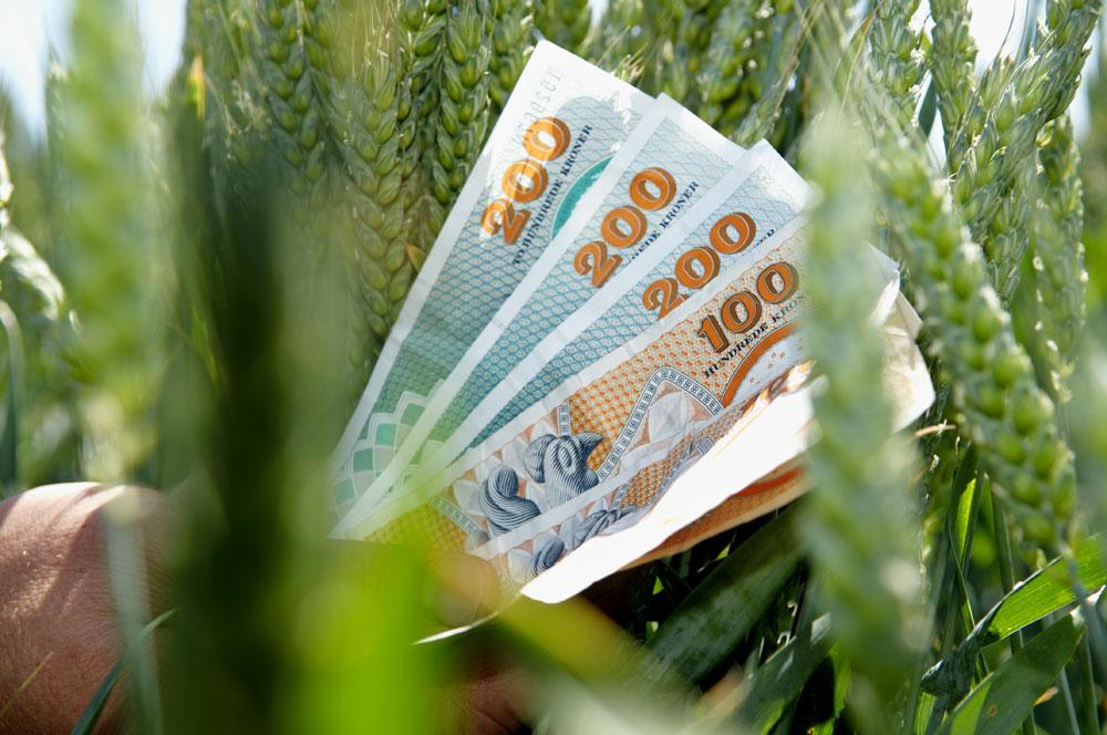 Kend Din Bundlinje, Og Tjen Flere Penge På Din Planteavl