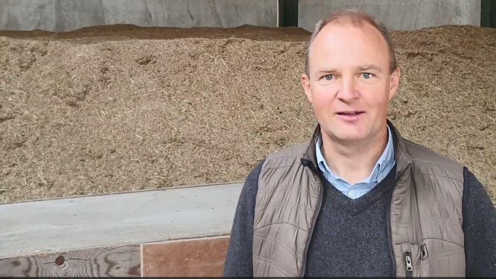 Landmand: Det Er De Her Fire Afgrøder, Jeg Tjener Penge På