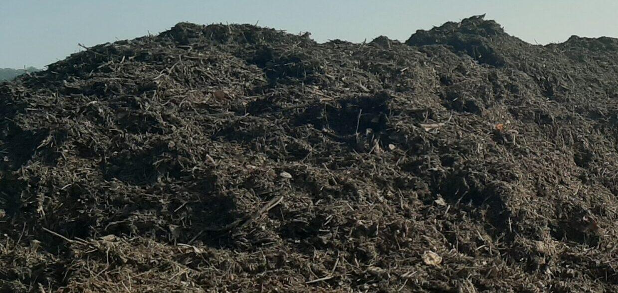 Større Krav Til De økologiske Planteavlere – Få Et Gratis Fremtidstjek