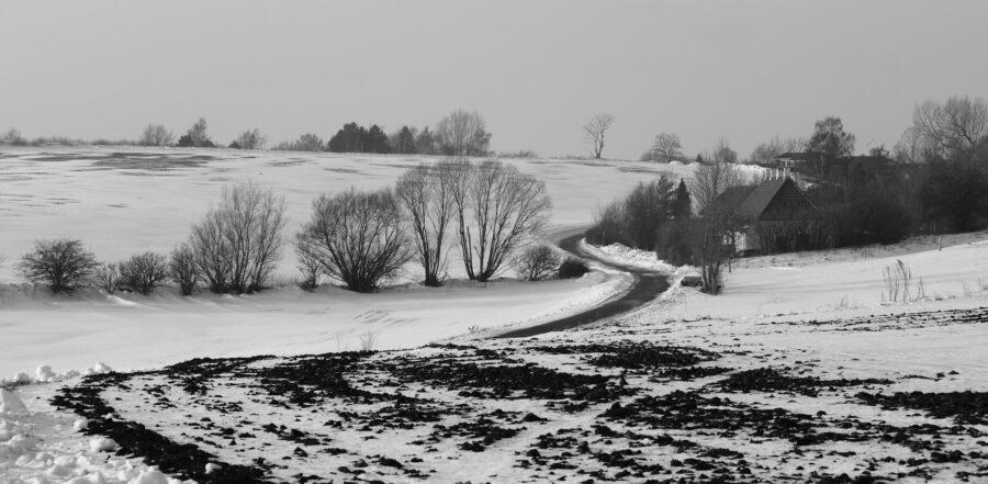 Sne Og Frost – Hvordan Er Det Nu Lige Med Gylle?