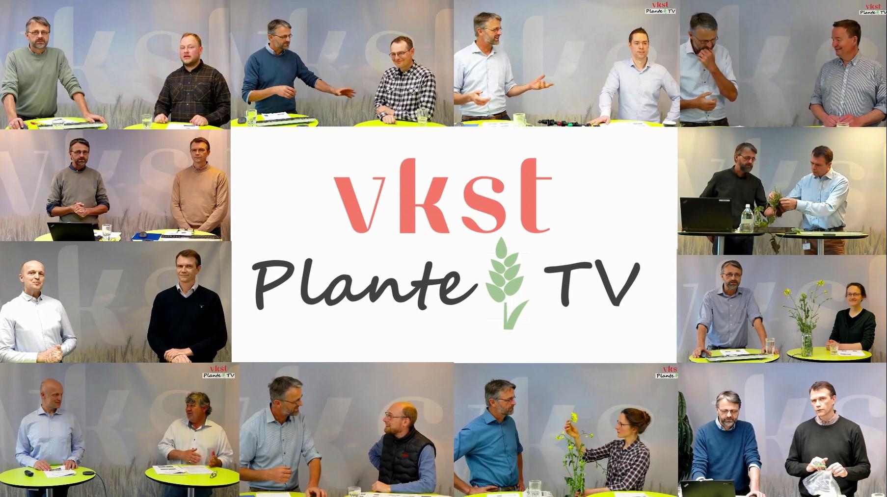 VKST Lancerer Ny Kanal: VKST PlanteTv